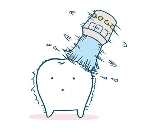 磨かれる歯
